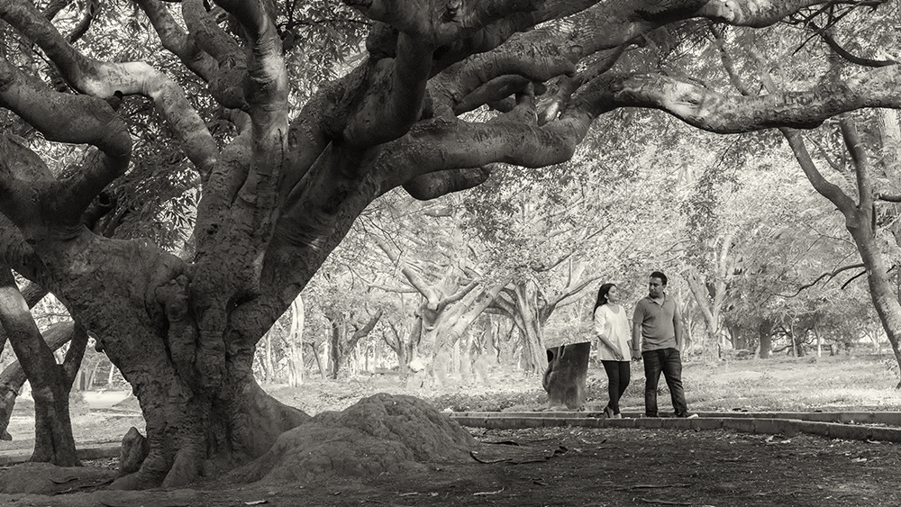 Cubbon park engagement photoshoot