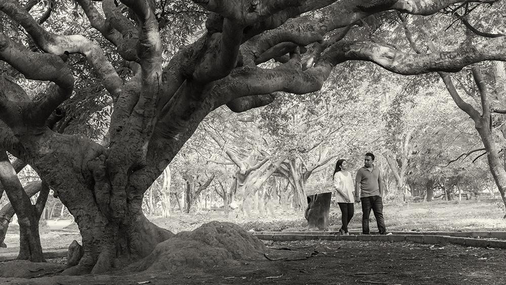 Cubbon park engagement photoshoot