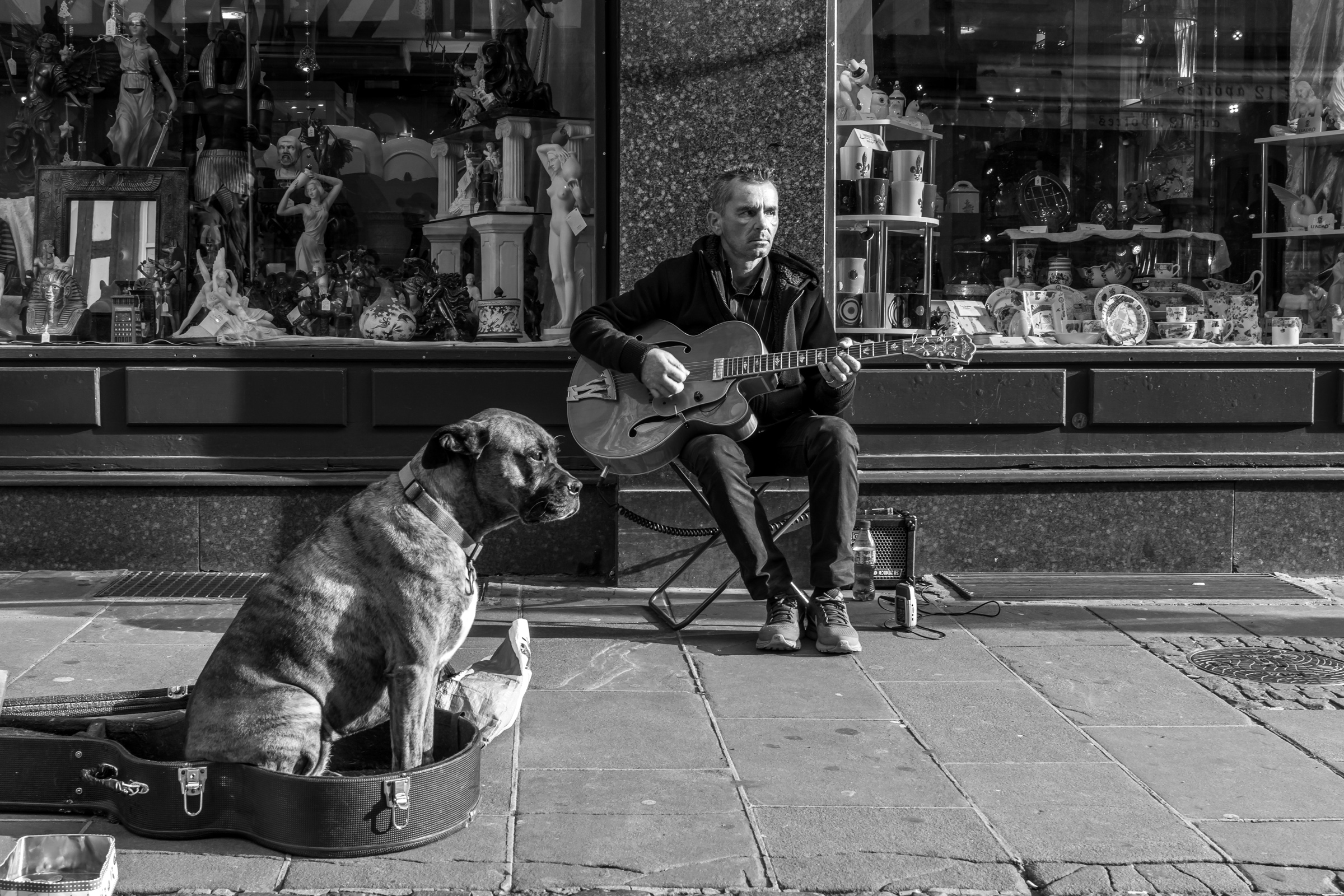 Strasbourg Musician with his Dog